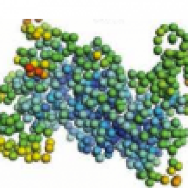 Anharmonic Decay in Vibrationnal States in Proteins
