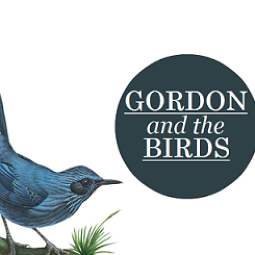 gordonandthebirds